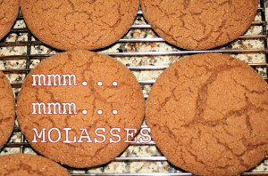 Secret Cookie Recipe Revealed!!!
