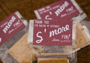 Smore Fun Classroom Treats