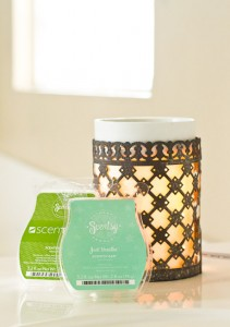 Serenity With Scentsy Violet Leaf