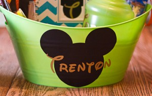 Disneyland Travel Baskets with Silhouette Design Studio