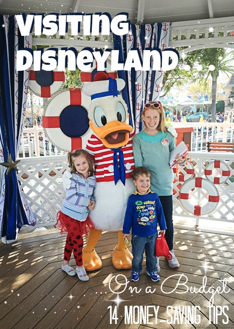 Disneyland budget