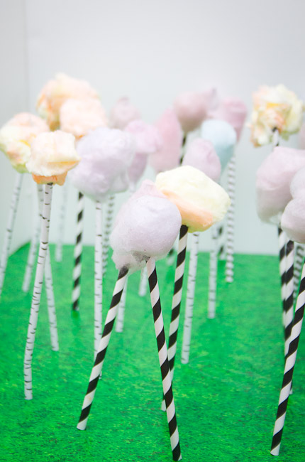 cotton candy truffula tree treats-9478