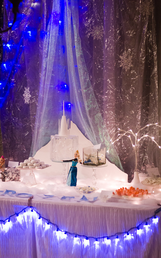 FROZEN party Winter backdrop-0008