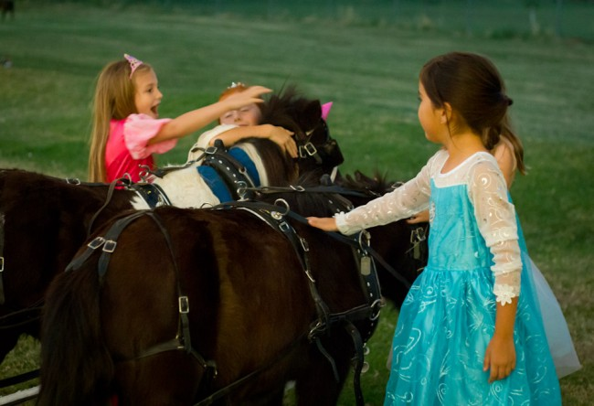 Cinderella party-pony ride