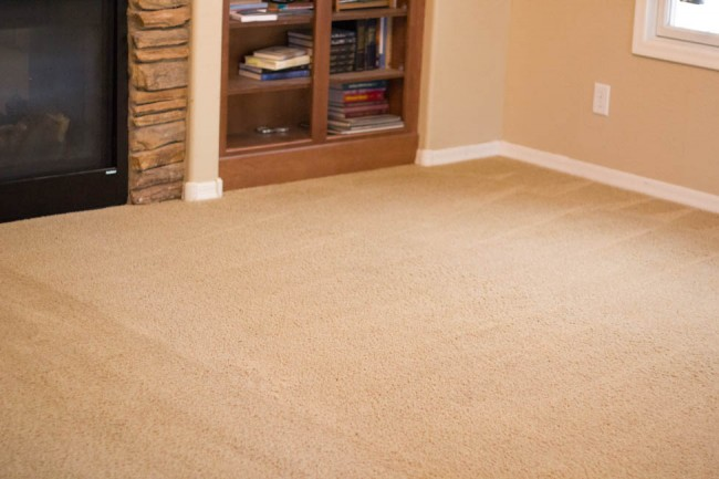 Zerorez carpet cleaning-0456