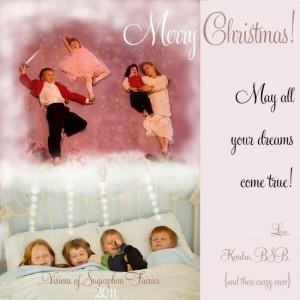 Virtual Christmas Card 2011
